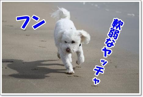 Eos_7d1401255010_450